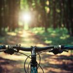 chicago bike trails